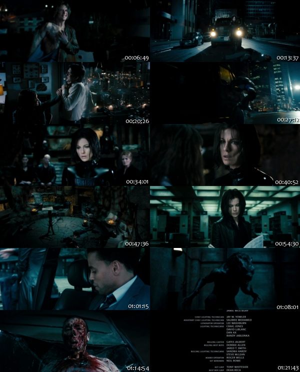 Underworld Awakening (2012) 1080p BluRay x264-SECTOR7 170111