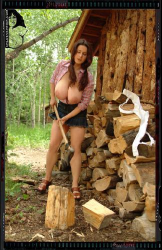 #018b - Holz vor der Huette