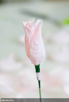 Цветы из гофрированой бумаги Fca42b77225b81484fbb775588cc2a5f
