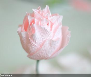 Цветы из гофрированой бумаги E1079e6460718bb7172e94c7d74cae93