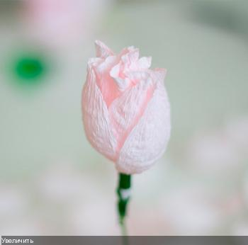Цветы из гофрированой бумаги 6db9fe9457393aaf8b866e097c7b28a0