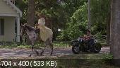 Новые приключения Пеппи Длинныйчулок / The New Adventures of Pippi Longstocking (1988) WEB-DLRip | A