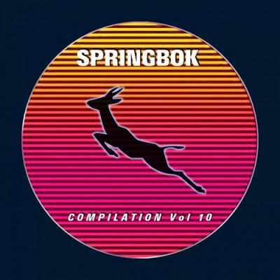 Springbok Records Presents Compilation Vol 10 (2018)
